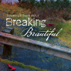 Thumbnail image for Breaking Beautiful by Jennifer Shaw Wolf