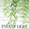Thumbnail image for Eyes of Light by Charissa Stastny